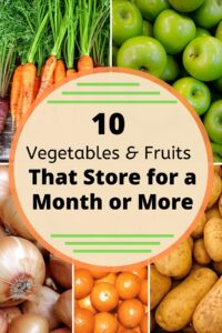 Text on Image: 10 Fruits & Vegetables that Keep for a Month or More. Image background: carrots, potatoes, onions, oranges, apples.