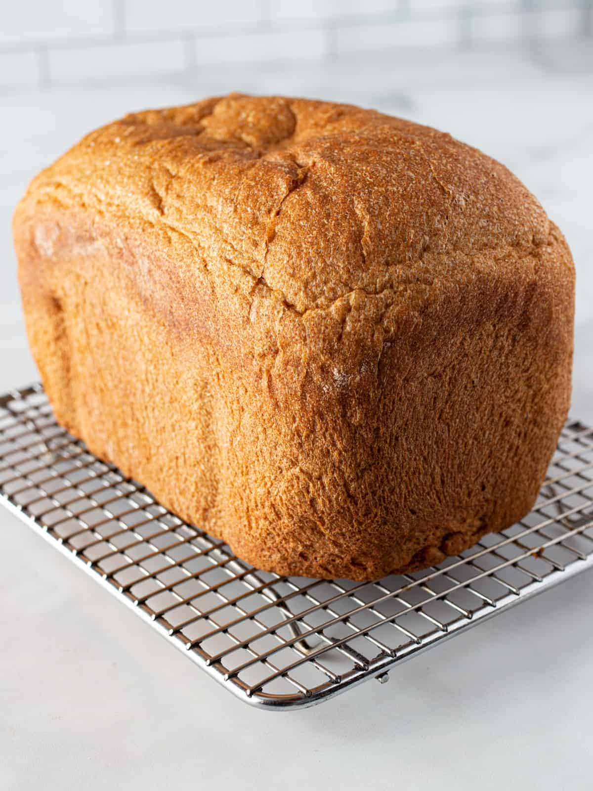 Whole wheat loaf cooling on a wire rack.
