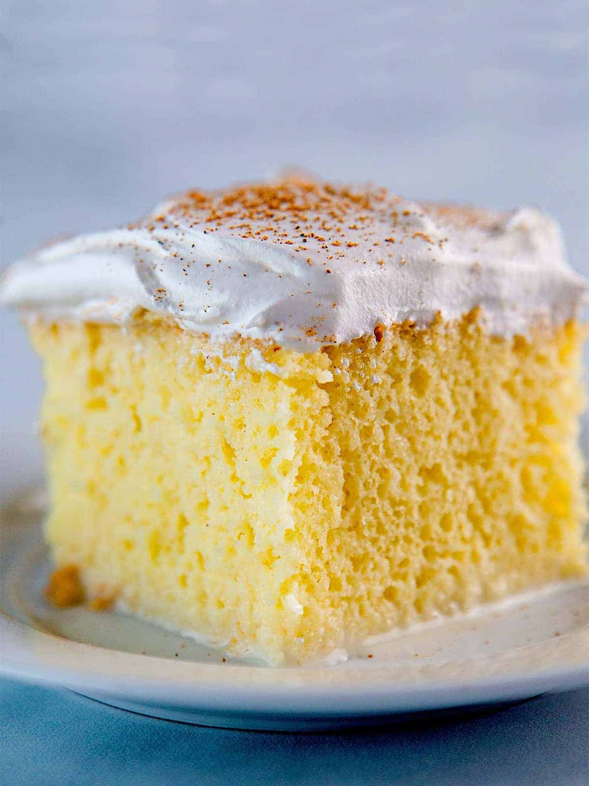 Slice of tres leches cake with whipped cream frosting on plate.
